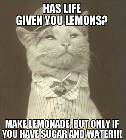 When Life Gives You Lemons, Make Lemonade! But use Sugar and Water