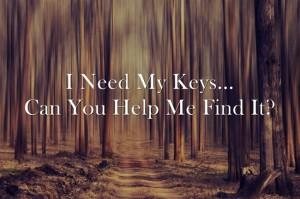 I-Need-My-Keys-Can-You (2)